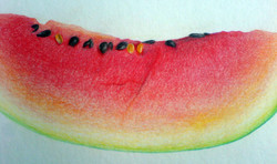 The Watermelon (2009) - Coloured pencil on Card