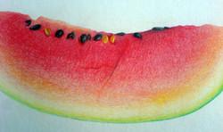 The Watermelon (2009) - Coloured pencil on Card