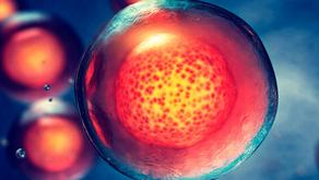 Proteína C Reactiva: la importancia de medirla