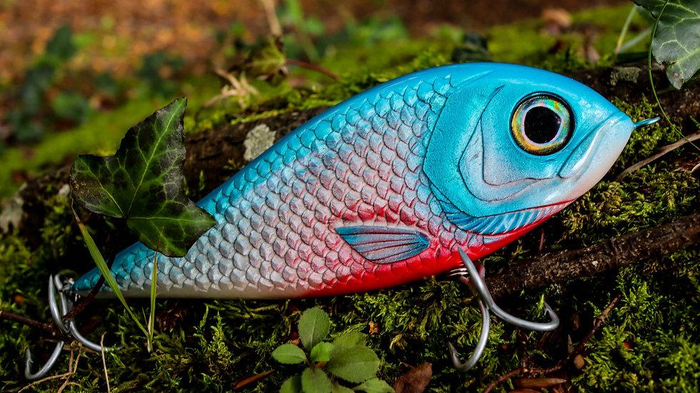 Piranha - Blue