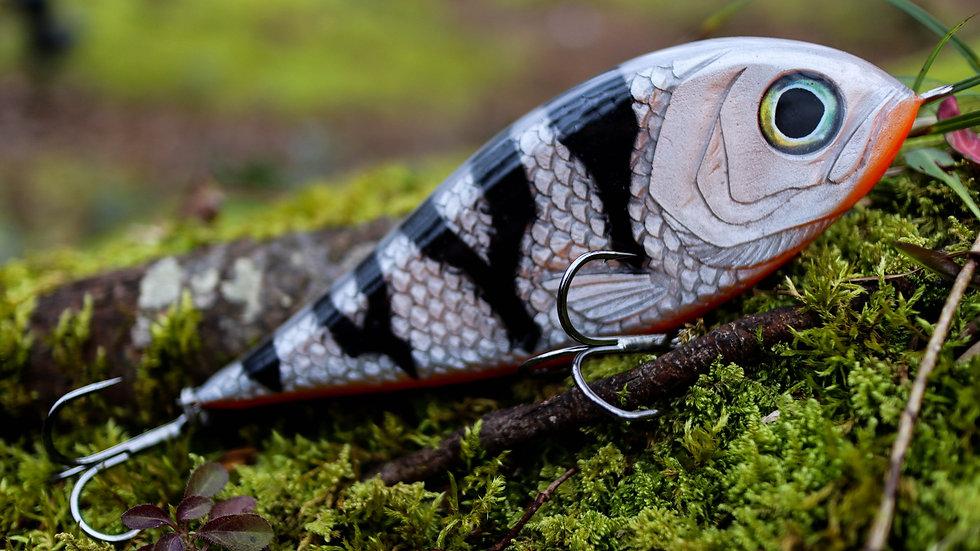 Piranha - Silver Perch