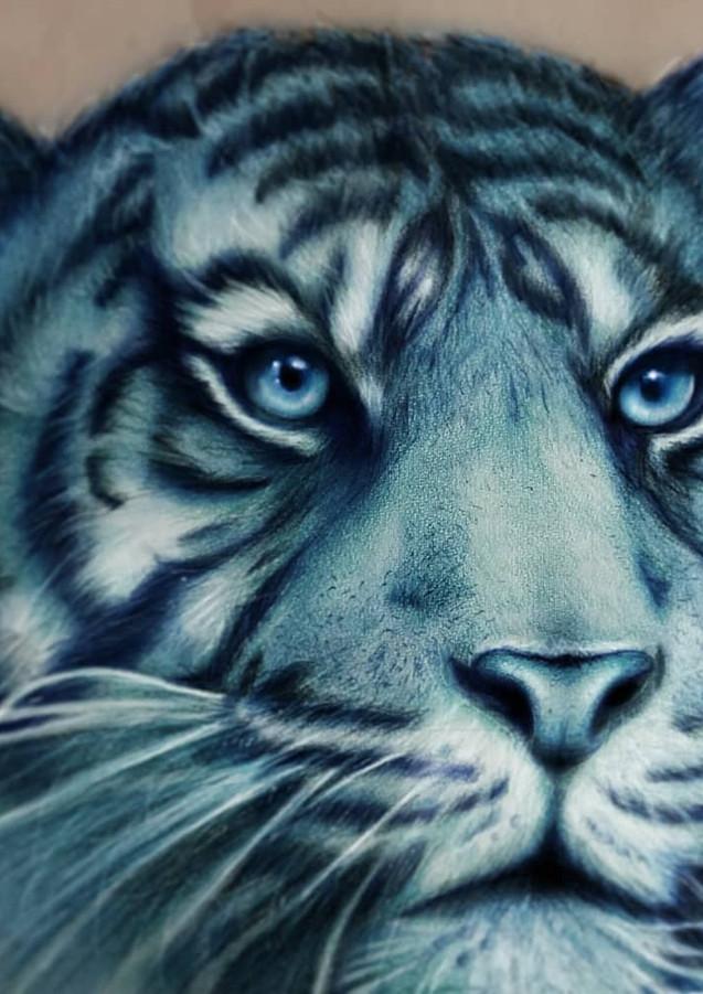 Tiger Art Drawing