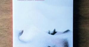 """Thoughts on Kawabata Yasunari's """"Snow Country"""" /  川端康成の「雪国」の印象"""