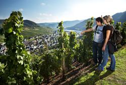 Wein-und-Wandern-an-der-Mosel