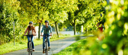 Fahrrad Moseluferweg