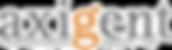 Axigent logo.png