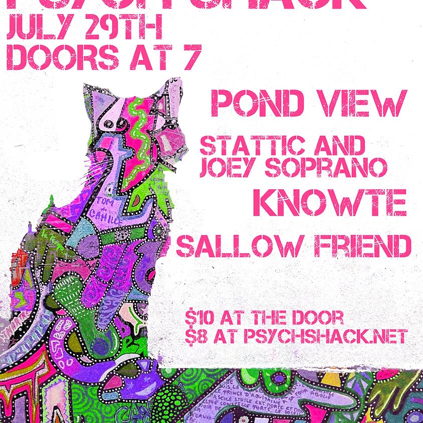 Knowte, Pond View, Sallow Friend, Vizzy
