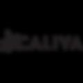 new_caliva_logo_360.png