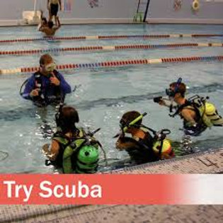 Discover Scuba Pool Diving
