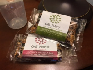 Oat Mama Lactation Bars