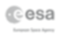 41_digital_logo_grey_sign_A.png
