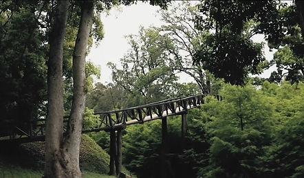 Дендрологический парк Шеквитили .jpg