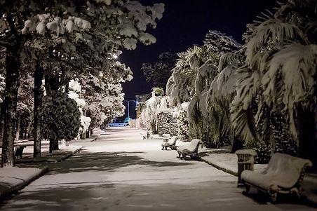 Батуми Зимой 3.jpg