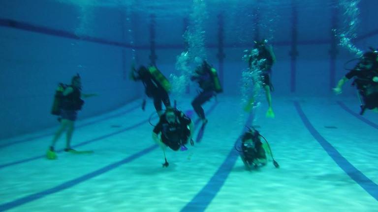 Introduction à la plongée - En piscine