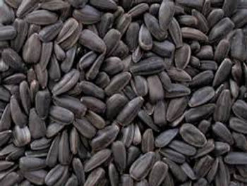 This is an image of Black Sunflower Seed