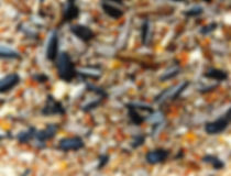This image is of UK Bird Seed Gold Mix