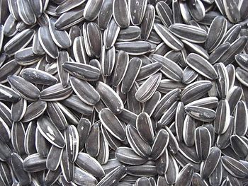 This is an image of Striped Sunflower Seeds
