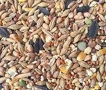 Quick Buy - Bronze Bird Seed Mix