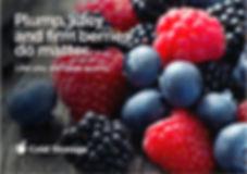 Fresh STRIP ADS 5 finl_A1 size_hires-02.