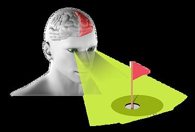 left-brain.png