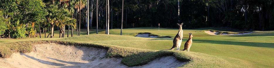 The-Palms-Golf-Course-17.jpg