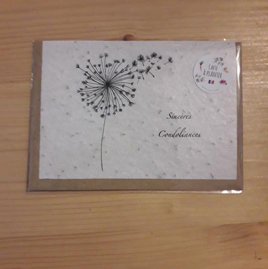 les_cartes_à_planter_de_Lulu_7.jpg