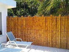 cercos de bambu