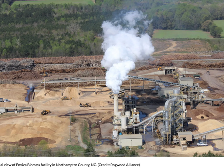Wood Pellets – A Controversial Clean Energy