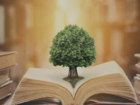 Higher Education Sustainability Progress