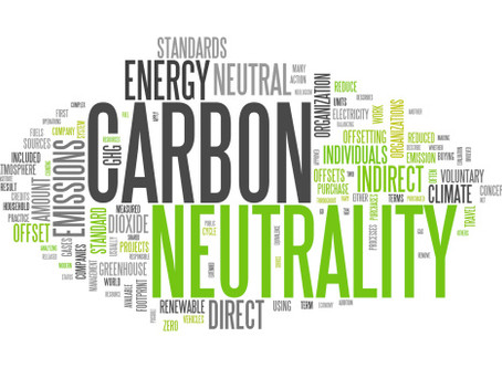 Carbon Neutrality By (Fill in the Blank) Through (Fill in the Blank)