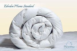 Edredon Pluma Standard
