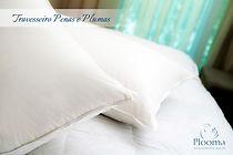 Travesseiros Pluma Firm