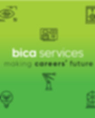 BICA services.png