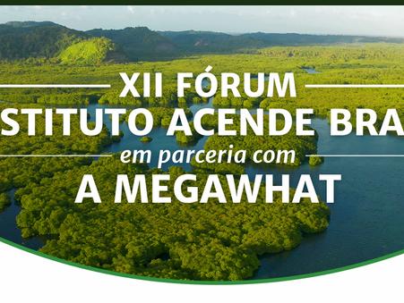 Amazônia e Setor Elétrico