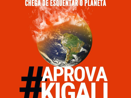 Petition for the Kigali Amendment
