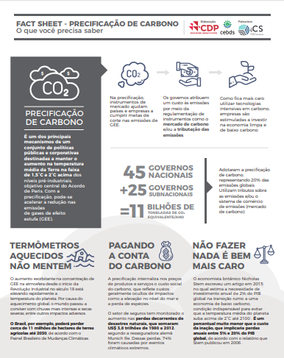 Fact Sheet sobre Precificação de Carbono