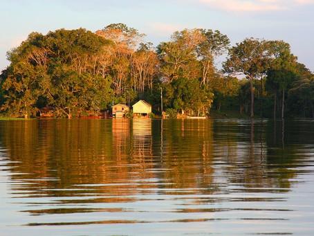 For a fertile Amazon