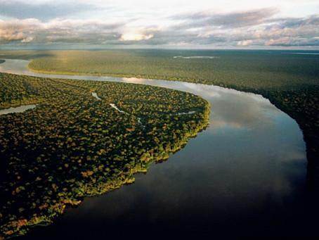 85% dos católicos dizem que Amazônia é fundamental para combater mudanças do clima