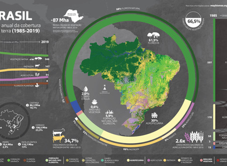 MapBiomas: patrimônio imaterial da democracia
