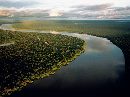85% of Catholics say that the Amazon is fundamental in combating climate change