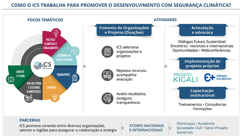 Infografico-iCS_2021.jpg