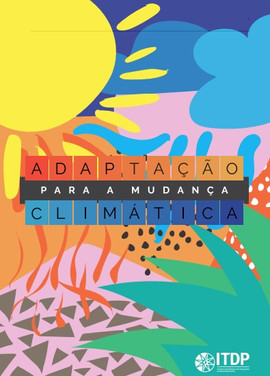 Adaptação para mudanças climáticas | ITDP Brasil