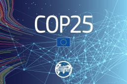 Preparatory webinar for COP25