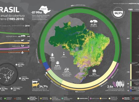 MapBiomas: intangible heritage of democracy