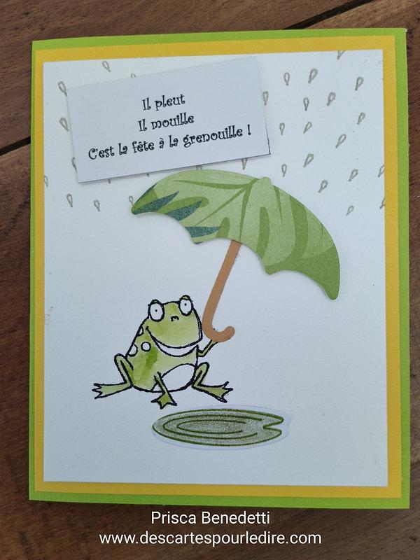 c'est_la_fête_à_la_grenouille.jpg