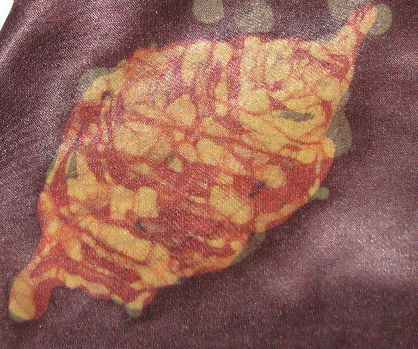 beech leaf 2.