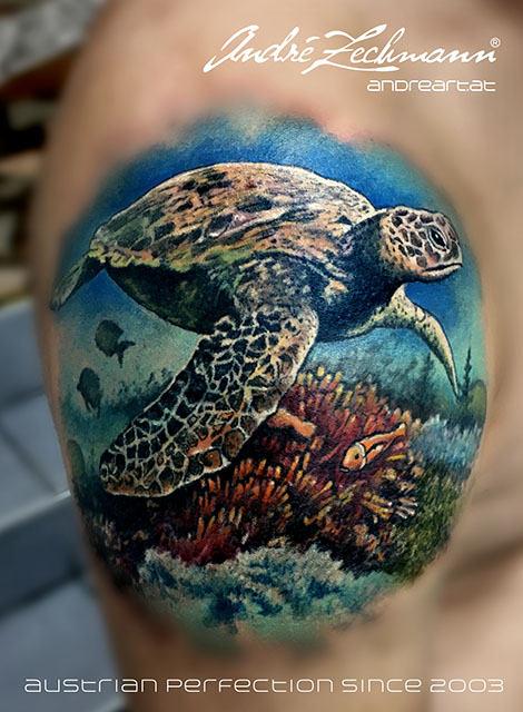 Turtle_tattoo_by_andre_zechmann.jpg