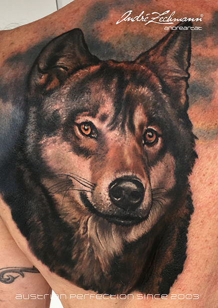 Wolf Shoulder_tattoo_by_andre_zechmann.j
