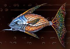 PsyFish