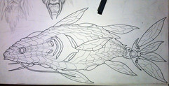 Back to robot fish
